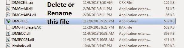 idm fake serial number error fix